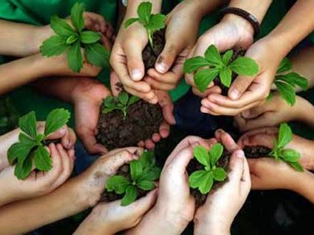 educacion-ambiental-en-casa